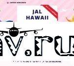 JAL、ホノルル線就航60周年記念でハワイ旅行あたるキャンペーン